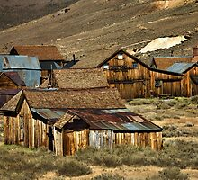 Bodie Community Living by pat gamwell