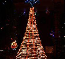 Oh Christmas Tree by Karlee Lynam