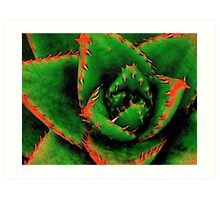 Green Succulent Art Print