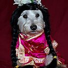 Bella The Chinese Empress by Pascal and Isabella Inard
