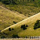 Hills ...with a fence. by Caroline Gorka