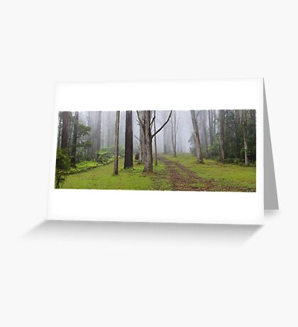 Amidst Mountain Ash Greeting Card