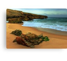 shaped by the sea.... Canvas Print