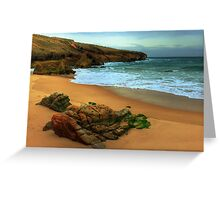 shaped by the sea.... Greeting Card
