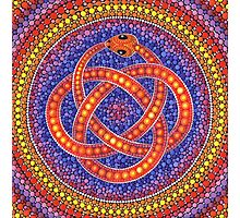 Red Ouroboros Celtic Snake Photographic Print