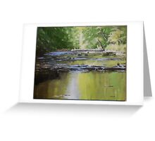 Riffles above Anderson Falls Greeting Card