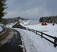 Winter  by Jane Best