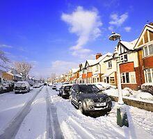 snowbound by Zuzana D Photography