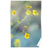 Flowers are Sunshine Poster