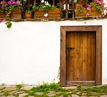 Old Door by Nickolay Stanev