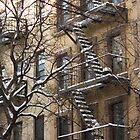 Snow Catchers by ElyseFradkin