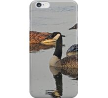 Canadian Geese iPhone Case/Skin