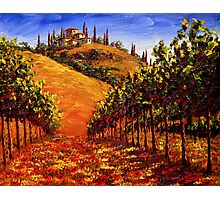 Tuscany Vineyard on the Hill Photographic Print