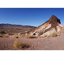 Desert Brush Photographic Print