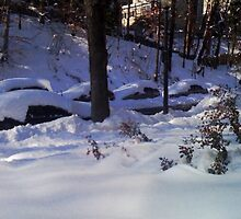 Evening After Big Snowstorm (4) by SylviaS