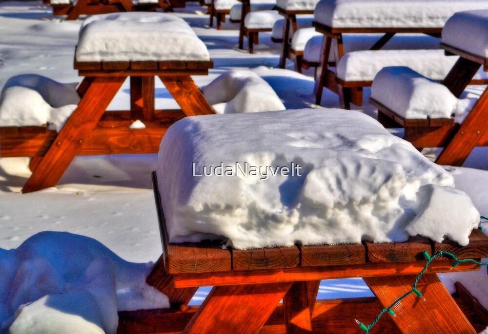 Snow party by LudaNayvelt