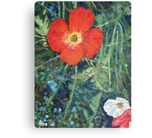 Garden with Bright Red and White Poppies Canvas Print