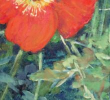 Garden with Bright Red and White Poppies Sticker