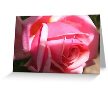Blushing Beauty in Sun and Shade Greeting Card