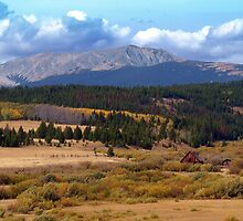 Montana Country by Kathy Weaver