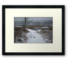 Peaceful desolation Framed Print