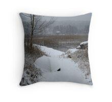 Peaceful desolation Throw Pillow