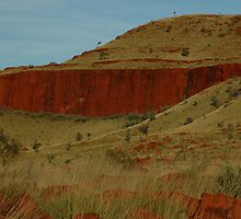 Red walls and spinifex... by Richard  Stanley