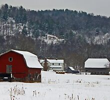 Barns in the Valley by Jane Best