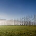 Morning Fog - near Lake Hawea, South Island, New Zealand by Leigh Voges
