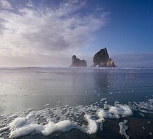 Archway Islands - Wharariki Beach, South Island, New Zealand by Leigh Voges