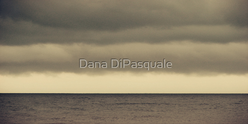 The Storm Came With Fury by Dana DiPasquale