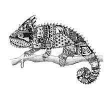 Zen Chameleon Photographic Print