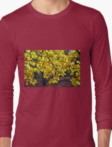 Yellow maple leaves Long Sleeve T-Shirt