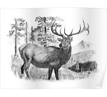 The Mystical Bull Elk Poster