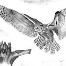 Owl as it Prepares to Land in Old Tree by Russ Smith