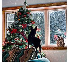 Waiting for Santa! Photographic Print