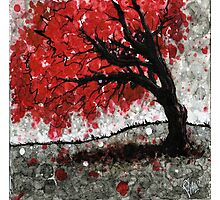 Red Fall Tree Dropping Leaves Photographic Print