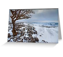 Gnarly tree in a snowy landscape Greeting Card