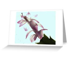 New Flower Project 44 Greeting Card