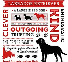Labrador Infographic by wellbreddesign