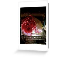 New Flower Project 105 Greeting Card