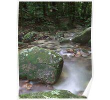 Creek - Mossman Gorge, Far North Queensland Poster