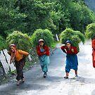 Hill Women by RajeevKashyap
