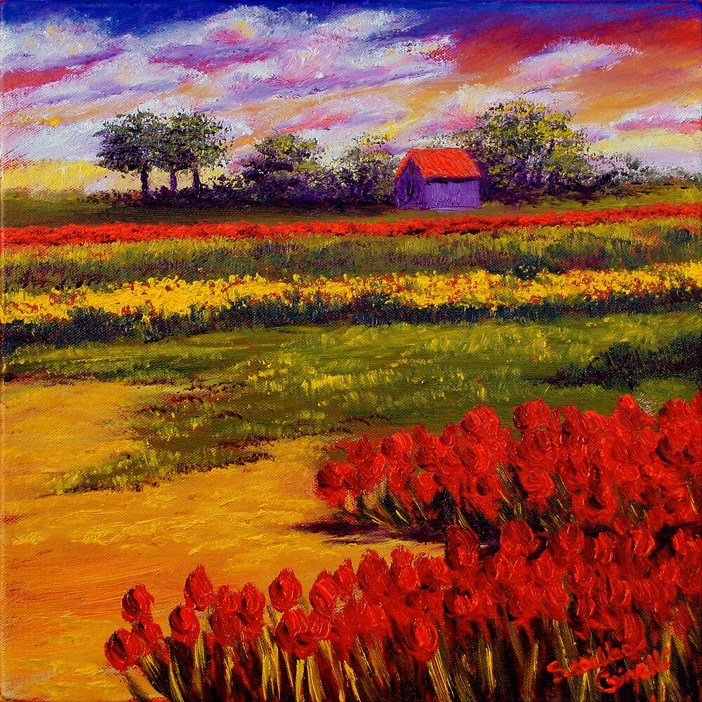Red Tulips in the Netherlands by sesillie
