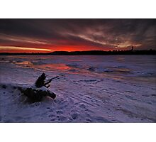About Frozen Log Photographic Print