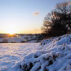 Winter Sun by Chris Charlesworth