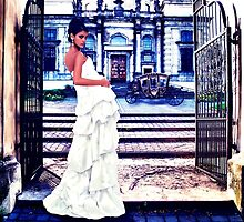 High Fashion Gate Fine Art Print by stockfineart