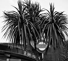 St. John's Wood Tube Station by AntSmith