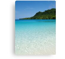 crystal clear. Canvas Print