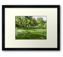 Summer Blanket in St James' Park Framed Print